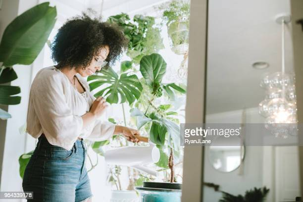 a young woman waters her houseplants - flora imagens e fotografias de stock