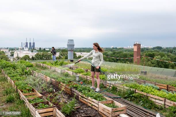 young woman waters plants in an urban garden in front of a power station - vita cittadina foto e immagini stock