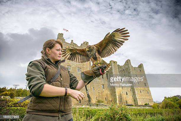 Young woman wearing gauntlet holding harrier hawk (Accipitridae) outside Bolton Castle, a 14th century Grade I listed building and a Scheduled Ancient Monument.