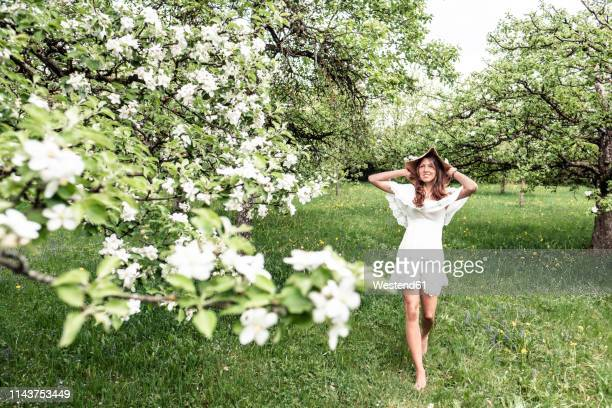 young woman wearing white dress and floppy hat walking barefoot in garden with blossoming apple trees - weißes kleid stock-fotos und bilder