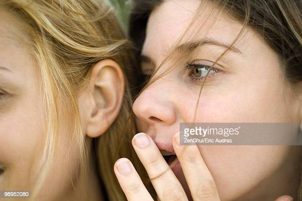 young woman whispering secret into friend's ear, close-up - private stock pictures, royalty-free photos & images