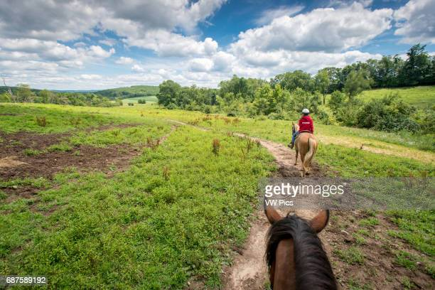 Young woman who is trail riding on a horse near Oakland Maryland USA