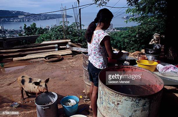 Young Woman with a Pig near Acapulco Bay