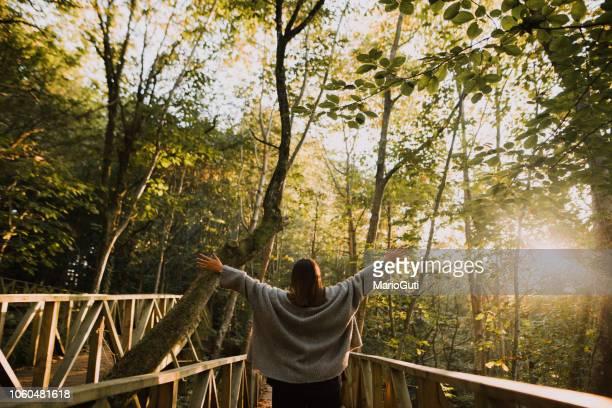 mujer joven con los brazos alzados por un bosque - medio ambiente fotografías e imágenes de stock