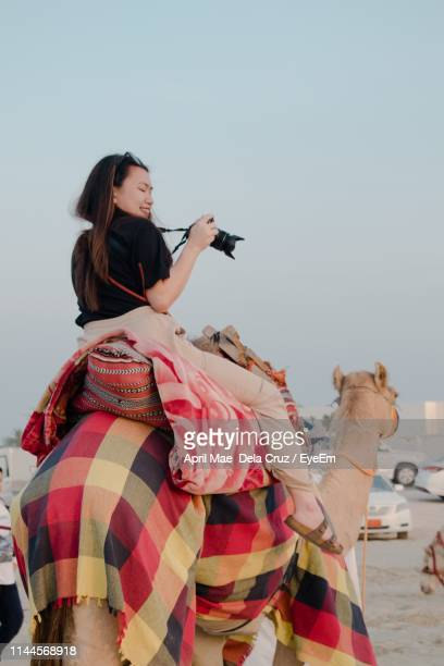 young woman with camera sitting on camel - ラクダ ストックフォトと画像