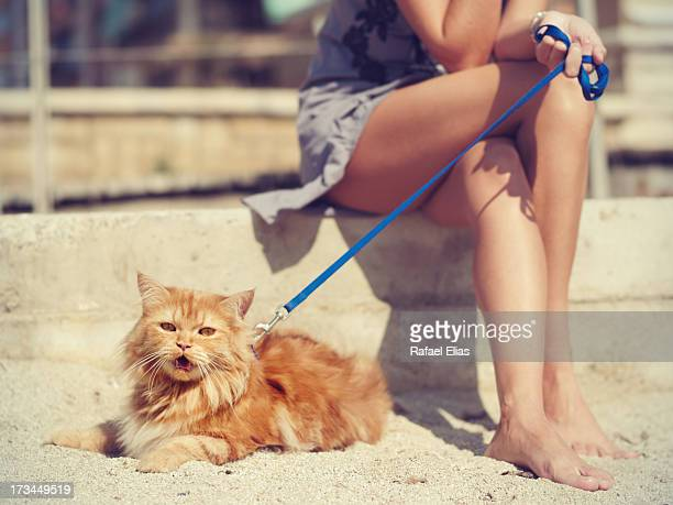 Young woman with cat on the beach