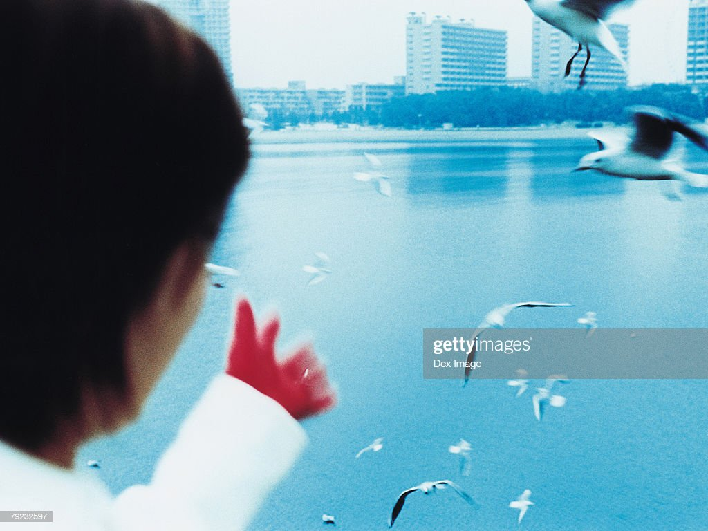 Young woman with city in background, seagulls flying : Stock Photo