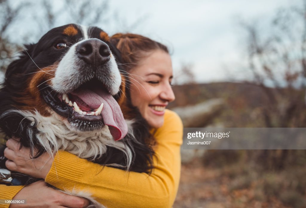 Young woman with dog : Stock Photo