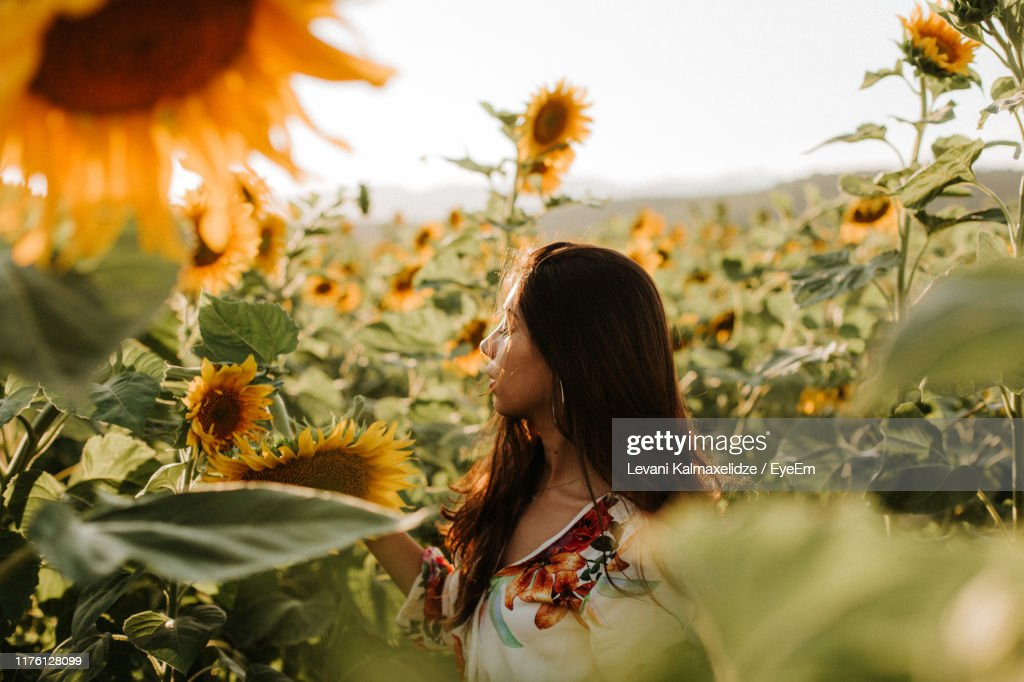 Young Woman With Eyes Closed Standing Amidst Sunflowers : Stock Photo