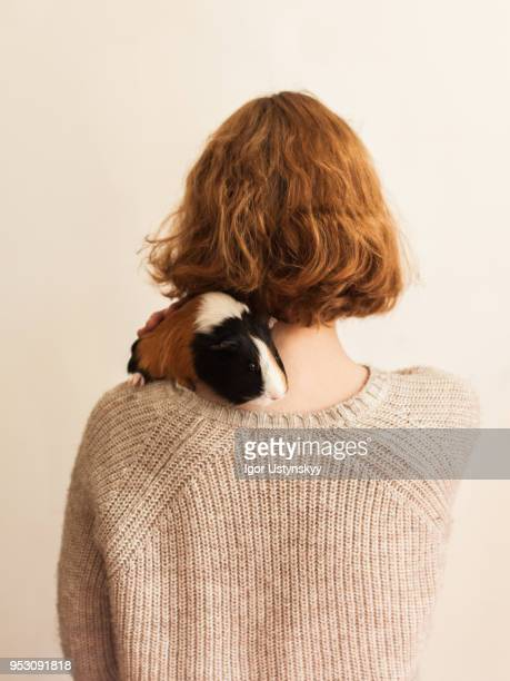 young woman with guinea pig - guinea pig stock pictures, royalty-free photos & images