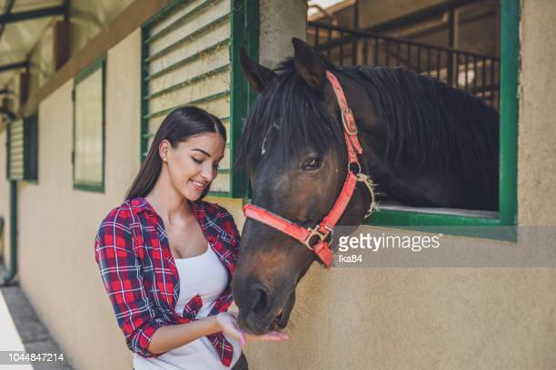 young  woman with her horse - restraint muzzle stock photos and pictures