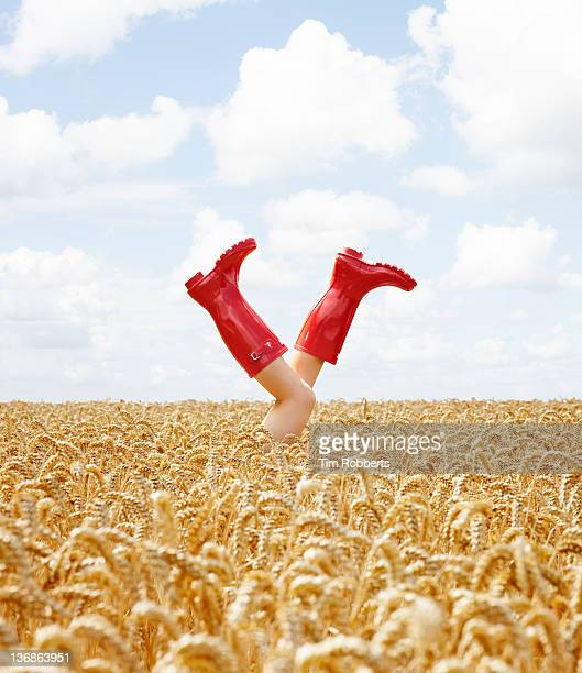 young woman with her legs in the air in crop field - gummistiefel frau stock-fotos und bilder