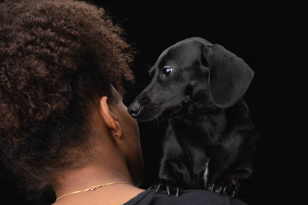 A young woman with her pet black daschund dog on her shoulder.