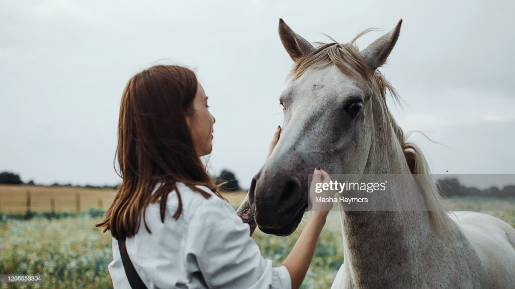 Young Woman With Horse : Stock Photo