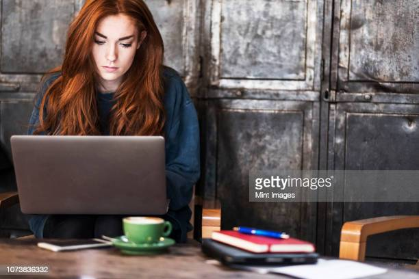young woman with long red hair sitting at table, working on laptop computer. - café da internet - fotografias e filmes do acervo