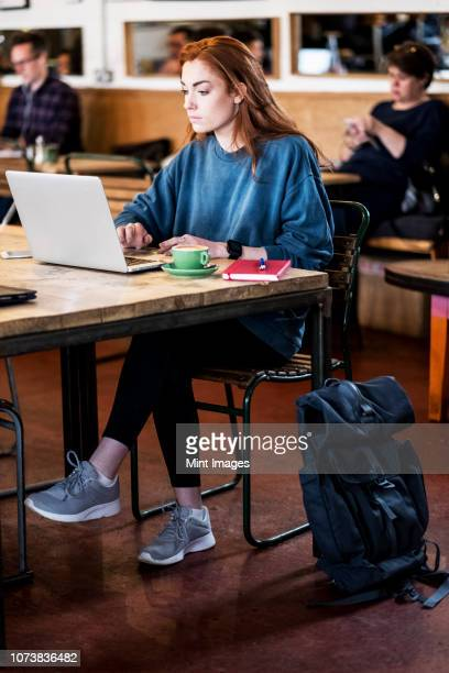 young woman with long red hair sitting at table, working on laptop computer. - internet cafe stock pictures, royalty-free photos & images