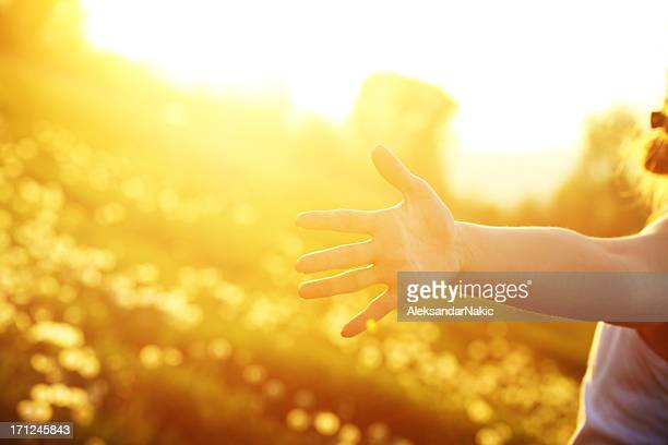 Young woman with outstretched arms in the sunlight