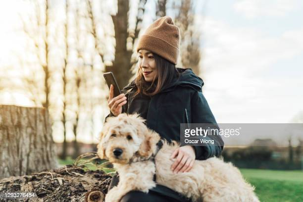 young woman with smartphone, out in nature with her dog - relaxation exercise stock pictures, royalty-free photos & images