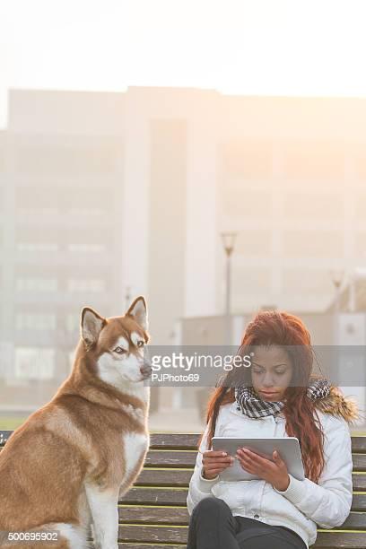 jovem mulher com tablet e seu cão - pjphoto69 imagens e fotografias de stock