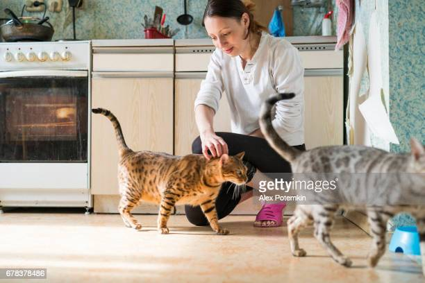 Young woman with two cats in the kitchen