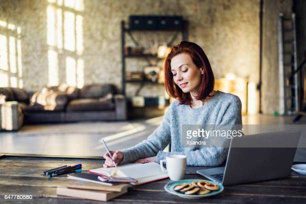 young woman working in a loft apartment with a laptop computer - illustrator stock photos and pictures