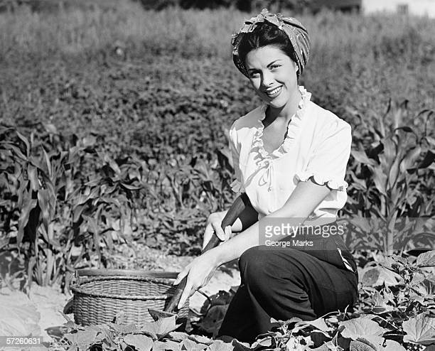young woman working in field, (b&w), portrait - black and white vegetables stock photos and pictures