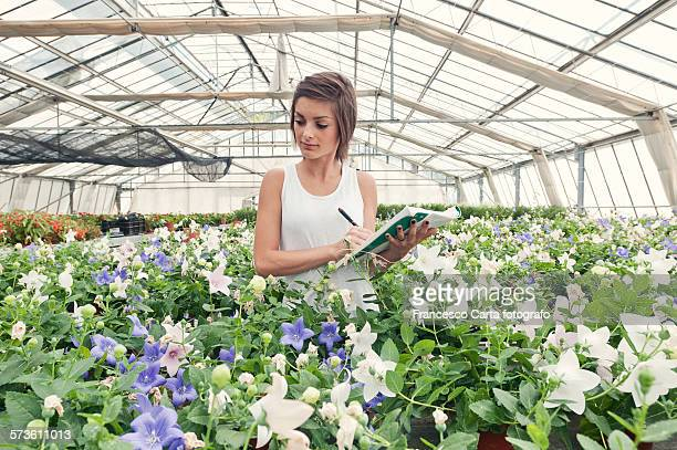 Young woman working in plant nursery