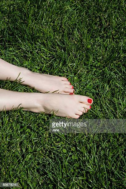 A young woman's bare feet with red painted toenails lying on grass
