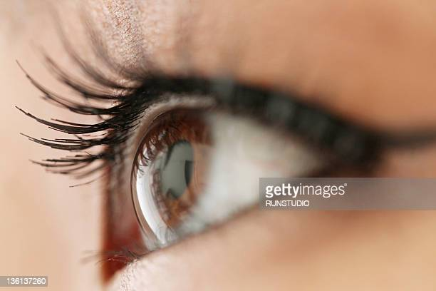 young woman's eye,close-up - 人間の眼 ストックフォトと画像