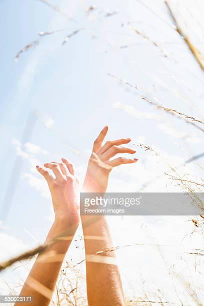 Young womans hands amongst long grass