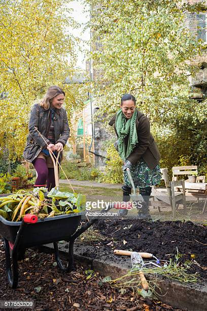 Young Women Digging In Urban City Garden, London, Europe