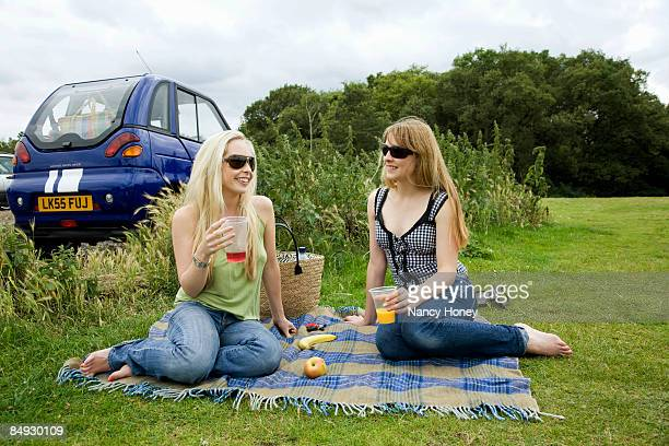 young women pick-nicking by electric car - nancy green stock pictures, royalty-free photos & images
