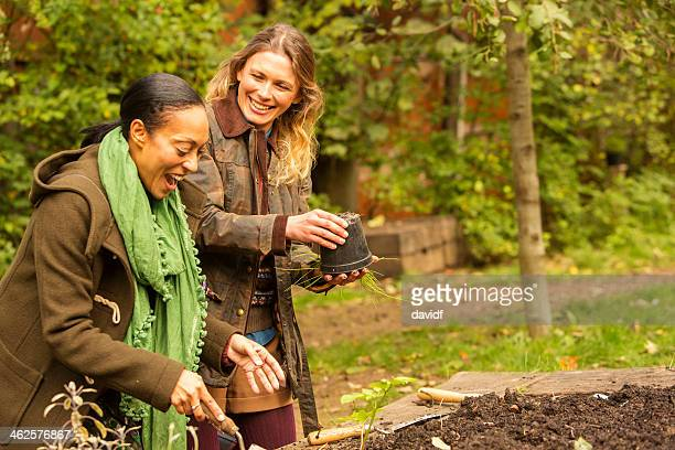 Young Women Planting Seedlings