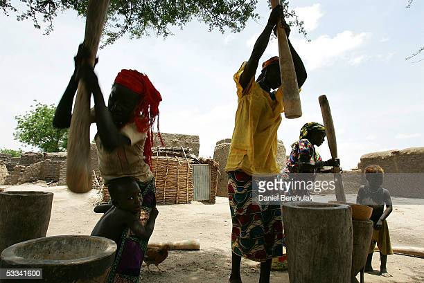 Young women pound grains of millet with pestle and mortar after receiving the millet distributed to the villagers of Douloukou by Care International...