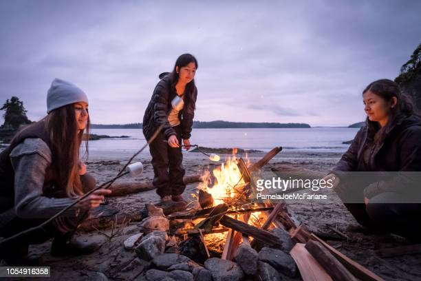 young women roasting marshmallows on campfire on remote, winter beach - warming up stock pictures, royalty-free photos & images