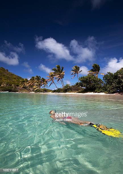 young women snorkeling in caribbean  shot midday - saint vincent et les grenadines photos et images de collection