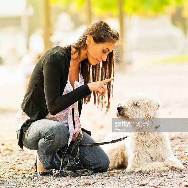 young women teaching her dog - tame stock photos and pictures