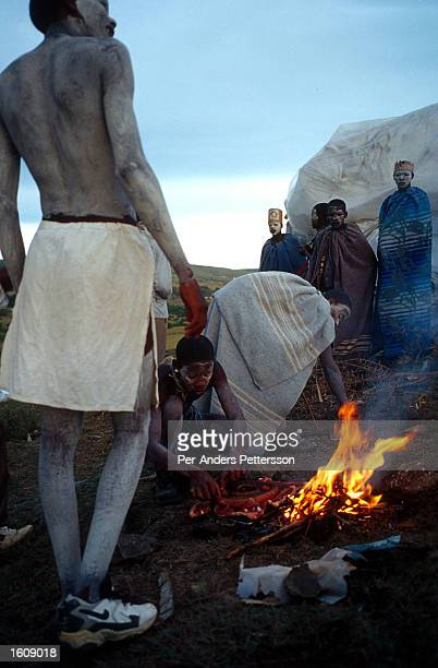 Young Xhosa boys cook a traditional meal during a manhood ritual December 7 2000 in Bisho Eastern Cape Province South Africa Every year thousands of...