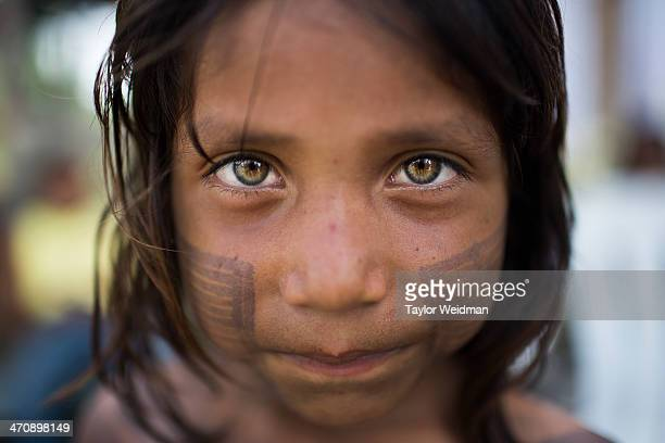 A young Xikrin girl The indigenous Xikrin people live on the Bacaja a tributary of the Xingu River where construction of the Belo Monte Dam is...
