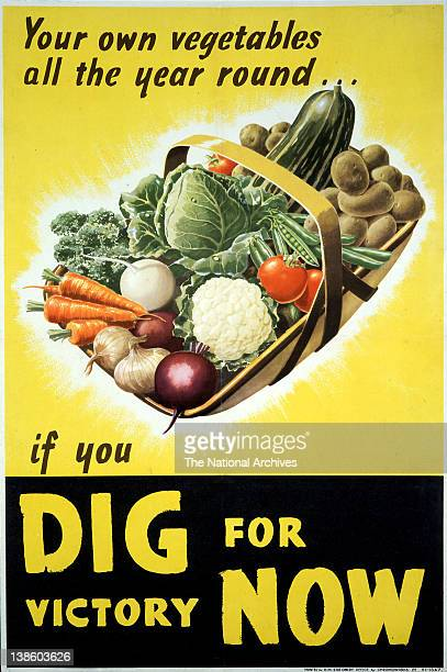 Your own vegetables all the year round Dig For Victory now