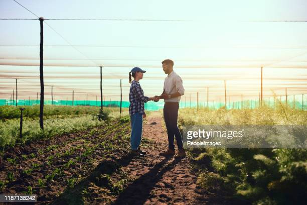 you're doing a fantastic job - handshake stock pictures, royalty-free photos & images