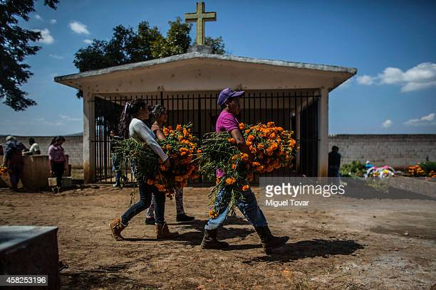 Youth carry bouquets of cempasuchil flowers in a cemetery at the outskirt of Patzcuaro which people remember those relatives and friends that have...