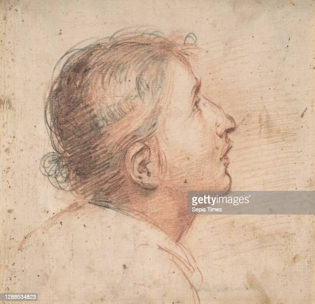Youth Gazing Upwards in Profile., 1607–61, Red and black chalk, 7 11/16 x 7 7/8in. , Drawings, Francesco Montelatici .