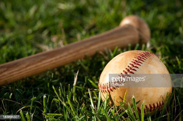 Youth League Baseball  Close Up