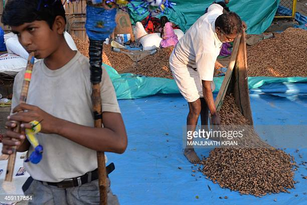 A youth plays a bamboo flute as an Indian vendor sets up his peanut stall during the famous 'Bengaluru Kadalekai Parishe' or Bangalore Peanut Fair in...