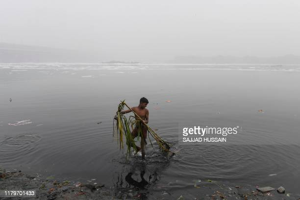 Youth removes sugar cane offerings of Hindu devotees from the Yamuna River following Chhat Puja Festival celebrations amidst heavy smog conditions,...