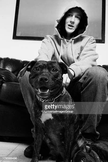 Youth wearing a hoodie with his Pit Bull Terrier dog at home, London UK 2006