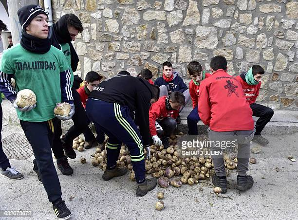 Youths collect turnips to throw at a man representing the Jarrampla in Piorna on January 19 2017 during the annual San Sebastian festivities The...