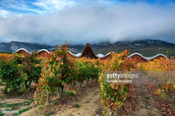 Ysios winery in Rioja alavesa