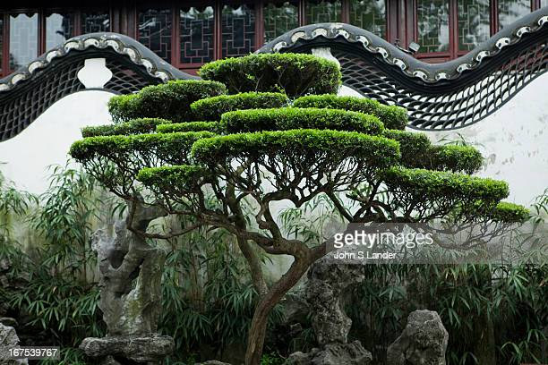 Yu Garden or Yuyuen 'Happy Garden' is an extensive Chinese garden located beside the City God Temple in Shanghai Yu Garden was first conceived in...